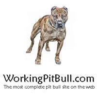 WorkingPitBull.com Logo links to website