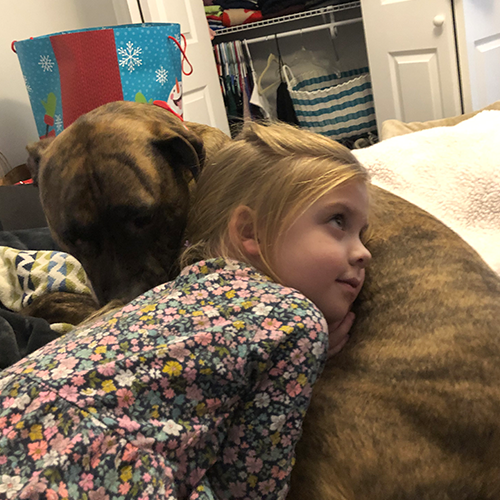 A little girl laying on her pitbull
