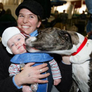 Abby, Therapy Dog giving a baby kisses while his mom holds him