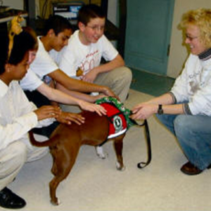Annie, therapy dog with children petting here