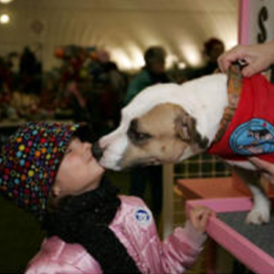 Grace, Therapy dog giving kisses to a little girl with a black hat and pink jacket