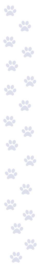 19 blue pawprints
