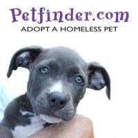 Petfinder.com logo links to website