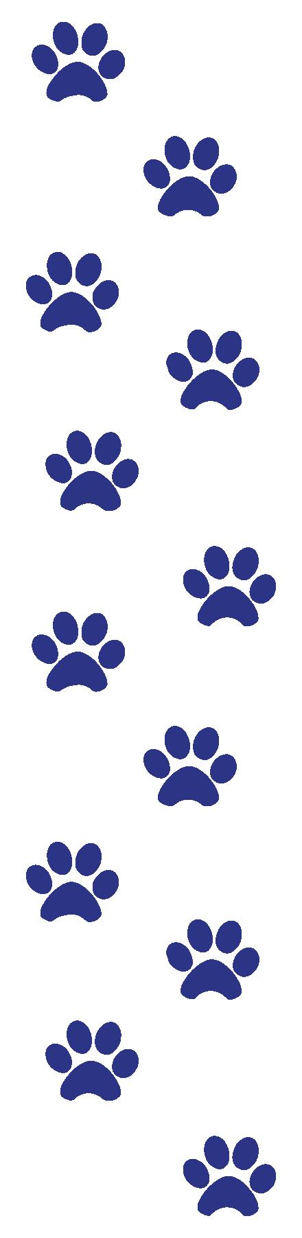12 blue pawprints
